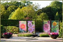 Sag mir, wo die Blumen blühen ... (Kindergartenkinder 2018) Tags: gruga park essen garten blumen kindergartenkinder