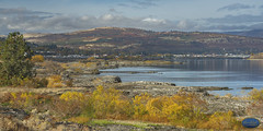 Columbia River Fall scene (The Dalles, Or) 2018 (TheArtOfPhotographyByLouisRuth) Tags: columbiariver water sky tree wildlife forest blue fall autumn colors fallcolors dalles oregonrivers landscapesoregon nikond810 landscape city winery grass bay rocks oregon beautiful professional thebestofworldpicture usriverscreekswaterfallsandlakes nikon85mmf18 nikonprime supreme ilovemynikon primelenses ocean shore hills italy scenic stunning view viewpoint oregonbeauty artofimages froknowsphoto aggroup flickrbestaward amazingcapture paintling backcountry award artistic scenicphotography thedalles gorgeous thebestwaterscapeslandscapes flickrbestlandscapes shadowsandmoods specialistnaturewildlifephotographers winner colorful scenis bluewater sheen scapes waterscapes aplaceforgreatphotographers seenonflickr