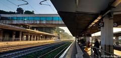 San Pietro Train Station (ElisaArduini) Tags: train station treno treni stazione sun photography fotografia fotografie