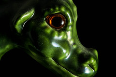 Dragon Eye (SKAC32) Tags: macro green dragon eyes canonef100mmf28macrousm macromondays