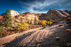Zion East Side Washes Hiking! Zion National Park Fall Foliage Utah Autumn Colors Fine Art Landscape & Nature Photography! Sony A7R III & Sony FE 16-35mm f/2.8 GM G Master Lens! Sharp High Res Photography! A7R3 Elliot McGucken Art! Maples & Cottonwoods! (45SURF Hero's Odyssey Mythology Landscapes & Godde) Tags: peak fall colors a7r 3 zion east side washes hiking national park foliage utah autumn fine art landscape nature photography sony iii fe 1635mm f28 gm g master lens sharp high res a7r3 elliot mcgucken maples cottonwoods the a7riii rocks