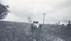 Women in horse and sulky on dirt track in flat country (Queensland State Archives) Tags: qsa country sulky horse queenslandstatearchives mud horses working