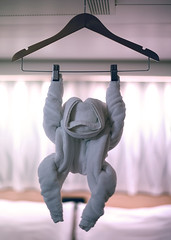 Monkey Business Going On In Our Room (Anthony Mark Images) Tags: animal monkey towelmonkey towelsculptures towelcreations pillows curtains stateroom bedroom mseurodam hollandamericalines cruiseship funny cute clotheshanger nikon d850 sweet