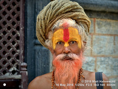 2014-11a Sadhus from Nepal 2018 (12) (Matt Hahnewald) Tags: matthahnewaldphotography facingtheworld character head face forehead ceremonialmakeup painted sandalwoodpaste chandanam tilaka urdhvapundra bigeyes expression fullbeard rolledup barechested travel religion exotic spiritual religious traditional cultural holy hindu hinduism vaishnavite vishnu temple ashram sadhu guru baba yogi pashupatinath kathmandu nepal nepali senior male elderly man nikond3100 primelens nikkorafs50mmf18g 50mm horizontal street portrait headshot fullfaceview outdoor posing awesome incredible authentic serious sternlooking abir clarity colour dreadlock person closeup consensual lookingatcamera