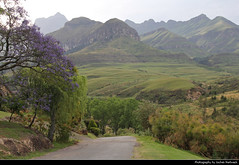Cathedral Peak, Drakensberg, South Africa (JH_1982) Tags: cathedral peak didima camp hotel chapel drakensberg drakensberge ukhahlamba great escarpment nature landscape scenery scenic central mountains mountain range 德拉肯斯堡山脉 ドラケンスバーグ山脈 드라켄즈버그산맥 south africa rsa za südafrika sudáfrica afrique sud sudafrica 南非 南アフリカ共和国 남아프리카 공화국 южноафриканская республика جنوب أفريقيا