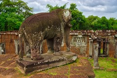 Elephant statue in the East Mebon temple ruins in Angkor Archeological Park near Siem Reap, Cambodia (UweBKK (α 77 on )) Tags: east mebon eastmebon temple ruins elephant statue angkor archeological park archeology ancient history historical stone siem reap cambodia southeast asia sony alpha 77 slt dslr trees jungle forest