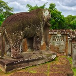Elephant statue in the East Mebon temple ruins in Angkor Archeological Park near Siem Reap, Cambodia thumbnail