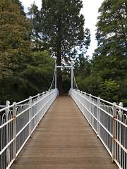 Bridge to the islands (What I saw...) Tags: inverness river ness bridge islands highlands scotland