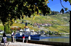 Arrivée à Cully (Diegojack) Tags: vaud suisse cully bourgenlavaux paysages vignes lavaux débarcadère lasuisse bateau belleepoque riex port d500 nikon nikonpassion