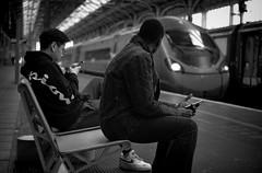 Capturing Attention (whosoever2) Tags: uk united kingdom gb great britain england nikon d7100 train railway railroad october 2018 preston lancashire virgin pendolino class390 man passenger traveller smartphone cell phone mobile station
