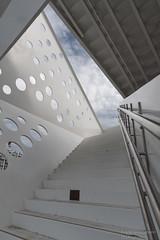 Treppe zur Aussicht (Frank Guschmann) Tags: aarhus dänemark regionmidtjylland frankguschmann nikond500 d500 nikon dk