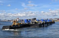 SWS Essex + SWS Breda + WF Pontoon (38) @ KGV Lock 18-10-18 (AJBC_1) Tags: london tug ©ajc dlrblog england unitedkingdom uk ship boat vessel northwoolwich eastlondon newham nikond3200 tugboat londonboroughofnewham royaldocks kgvlock kinggeorgevlock londonsroyaldocks docklands marineengineering swalshsonsltd swsbreda swsessex walsh blackfriarspier tflriver ajbc1 woolwichferrydockingpontoon ravesteinbv kgvdock riverthames gallionsreach kinggeorgevdock nikond5300 woolwichferryberthingpontoon intelligentdocklockingsystem idl automatedmagneticmooringsystem mampaeyoffshoreindustries