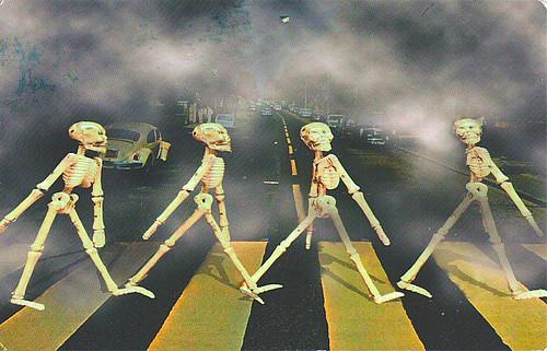 Skeletons image