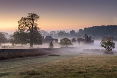 Ruins in the Mist (John__Hull) Tags: landscape mist sky bracken ferns misty bradgate house ruins newtown linford charnwood forest trees leicestershire uk england dry stone wall nikon d7200 winter autumn morning sunrise