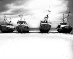 torup strand (Theolde) Tags: largeormat 8x10 kodad txp320 denmark vesterhavet