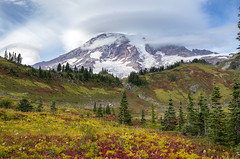 Fall colors at Paradise (s.d.sea) Tags: paradise mount rainier mt national park mountain mountains hiking volcano fall autumn landscape pnw pacificnorthwest washington washingtonstate wa cascades pentax k5iis meadow alpine clouds glaciers forest foliage myrtle falls skyline trail
