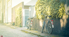Street 1 (Alan Piano Photography) Tags: street sun story straat foto fotograaf fine fiets light lightroom life lens land sony a7r a7r3 a7riii 85mm fe zwolle nederland nl test testing old holland alanpiano7 photo photography