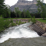 Cameron Creek, Waterton Lakes National Park thumbnail