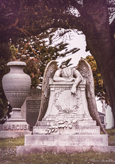 Colma 10.4.18 3 (Marcie Gonzalez) Tags: cypresslawnmemorialpark cypress lawn memorial park colma california san mateo county francisco usa us north america cemetery cemeteries cypresslawn south bay angel angels sculpture death graves statue grief texture outdoors westcoast cypresslawncemetery grave spiritual heaven weeping angelofgrief weepingangel jennie roosevelt pool