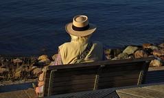 Life is good (jens-kristiansoendergaard) Tags: sandwik warm october swim water hot outside hat man enjoy