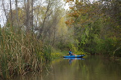 Verde River, 10/29/18 (EllenJo) Tags: lowertapcorap kayaking verderiver clarkdale verdevalley arizona pentaxks1 ellenjo october29 october 2018 paddling kayak