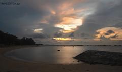Anxiety Weather (melvhsc100) Tags: seascape nature skyline cloud sunrise anxiety reflections water tree beach eastcoastpark singaporescenery sand