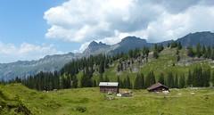 Living High Up in the Mountains (Marit Buelens) Tags: farmhouse bauernhof almhütte alm bödmeren cows kühe meadow tranquillity suisse schweiz switzerland schwyz muotathal urwaldweg walking hiking landscape panorama mountain alps alpen