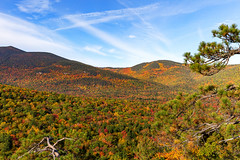 New Hampshire Fall (Bob90901) Tags: newhampshire fall whitemountainnationalforest cathedralledge echolakestatepark autumn morning rpg90901 fallcolor foliage forest mountain trees landscape sky whitemountains canon 6d canonef2470mmf28liiusm 2016 october 0850