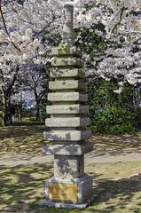 Japanese Pagoda (Dragonsilk) Tags: pagoda japan japanese washington dc cherry blossoms spring