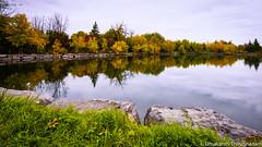 Fall colours (umakantht) Tags: fall fallcolors fallcolours landscapes landscape kanata ontario canada trees pond water reflection grass colorful