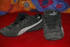 Puma Speed Cats (Tech360Jeans) Tags: puma sneakers turnschuhe speedcats alt alte fertige geil gei