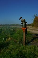 Wasserspender (Lutz Blohm) Tags: wasserspender wasser naturfoto natur landwirtschaft sonyalpha7aiii sonyfe24105mmf4goss