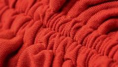 gathered-up (© mpg) Tags: mpg2018 hmm crinkledwrinkledfoldedcreased red mm crinkled wrinkled folded creased macro closeup gatheredup macromondays