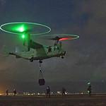 Osprey at Night, variant thumbnail