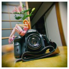 _B040161 (Concert Photography and more) Tags: 2018 november 5 japan tokyo pentak k1ii ricoh rikenon50mmf2 lensmania lenstest liveactionhero