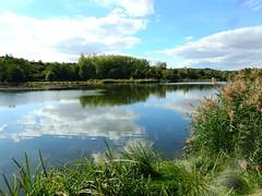 DSCN5233. (jeanchristophelenglet) Tags: santeuilfranceétangdevallière nature natureza paysage landscape paisagem reflet reflection reflexo