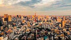 Tokyo; Golden Hour (drasphotography) Tags: tokyo tokio japan cityscape city golden hour tower goldene stunde drasphotography nikon d810 nikkor2470mmf28 architecture architektur travel travelphotography reise reisefotografie urban