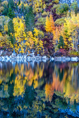 Lake Sabrina Reflections (J.T. Dudrow Photography) Tags: lakesabrina bishopcreek bishop owensvalley inyocounty inyonationalforest california autumn autumnlandscape autumncolors fallcolors fallcolor reflections reflection nature naturephotography naturallight aspen aspentrees aspenleaves sierranevadamountains easternsierra easternsierranevadamountains