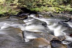 Tasso Creek Rapids Five (Bill Smith1) Tags: billsmithsphotography heyfsc lomo400c41 muskoka nlp2018 olympusom2n zuikomc50f18lens believeinfilm