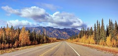 Autumn in Alaska (JLS Photography - Alaska) Tags: alaska alaskalandscape landscape landscapes lastfrontier mountains mountain mountainpeaks mountainside jlsphotographyalaska autumn road travel trees sky highway fall fallfoliage forest tree grass