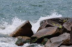 Surf at Falmouth (RockN) Tags: surf may2018 atlanticocean falmouth capecod massachusetts newengland 1000placesusa