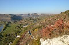 DSC_5405 (Sector2000) Tags: осень золотаяосень парк природа листья деревья automn выходной лес парки
