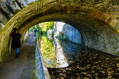 Penche-toi un petit peu plus! (dominiquita52) Tags: skipton bridge pont westyorkshire autumn leaves feuilles voûte