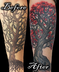 Tree Red Blossom leaf Cherry Oak Fix Up Cover Before and After Tattoo by Jackie Rabbit