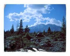 Lahar Viewpoint, Mt. St. Helens (a perhaps hand) Tags: polaroidlandcamera instantcamera instantfilm fujifp100c landscape volcano lavafield mtsthelens nature trees cloudscape mountain oregon