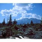 Lahar Viewpoint, Mt. St. Helens thumbnail