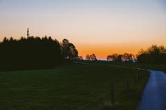 Sonnenaufgang (rallerabel) Tags: bergischesland bergischgladbach rheinischbergischerkreis sonnenaufgang natur wald sonne wiese
