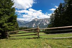 Haideralm (Piotr Grodzicki) Tags: summertime mountains alps italy