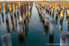 Jenny Cruise (Peter.Stokes) Tags: australia colour cruise landscape landscapes native outdoors panorama photography sea sky sunrise transport vacations water melbourne port warf