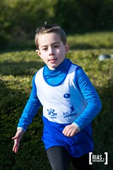 """2018_Nationale_veldloop_Rias.Photography11 • <a style=""""font-size:0.8em;"""" href=""""http://www.flickr.com/photos/164301253@N02/44810375612/"""" target=""""_blank"""">View on Flickr</a>"""